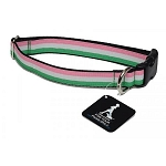 Dog Collar - Republic